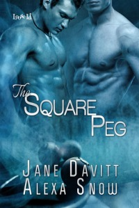 The Square Peg Cover