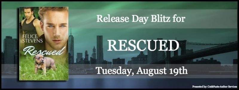 Release Day Banner1.1.jpg