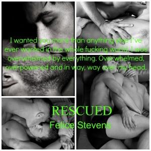 RescuedPromo3.8