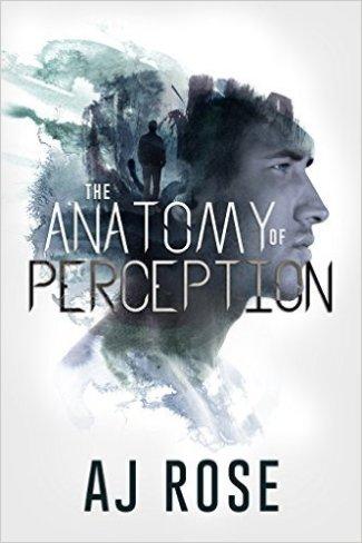 anatomy of perception