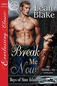 BreakMeNowCover
