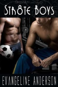 Straight Boys Evangeline Anderson cover